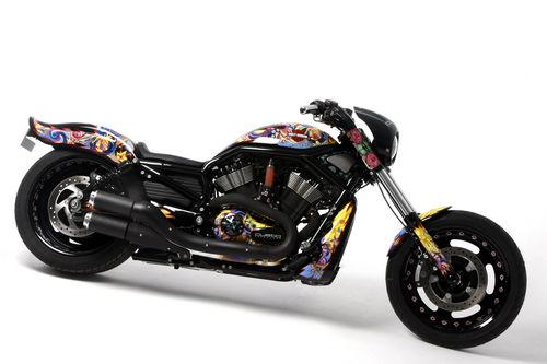 Harley Custo