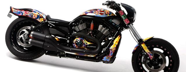 La bellissima Harley Custo fa del bene