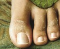 ProNails Foot Care per piedi da modelle